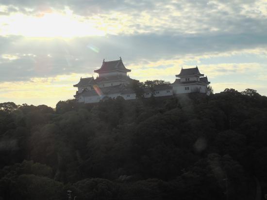 Tokyu Inn Wakayama : レストランから眺めた和歌山城