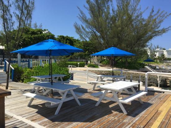 George Town, Gran Caimán: Discover Scuba Diving Area