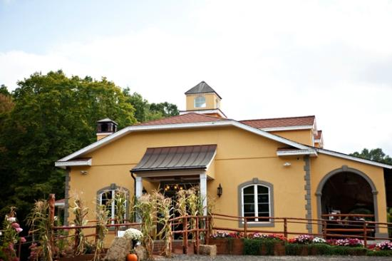 Wallingford, CT: Fall at Paradise Hills Vineyard
