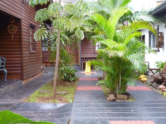 Petit Hotel Si Mi Capitan : Una de las vistas del jardin del Hotel Si Mi Capitan