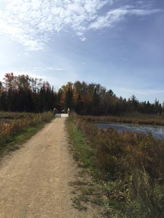 Three Lakes, WI: Recently ran a half marathon on the Three Eagle Trail. It was gorgeous!!! Excellent trail for ri