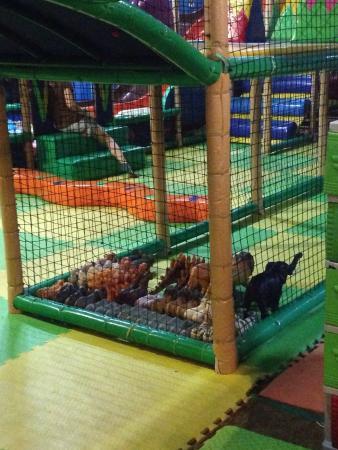 Zoofari Kids Adventure: photo0.jpg