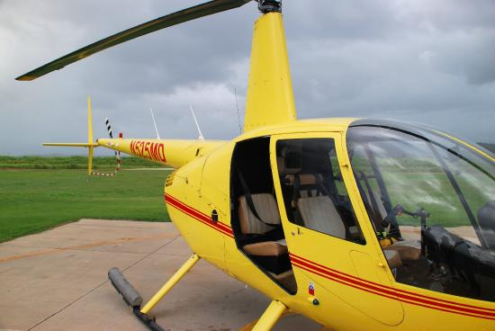 Our ride - Robinson R44 - Picture of Mauna Loa Helicopter Tours