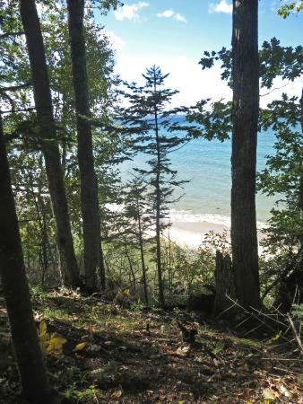 Thorne Swift Nature Preserve: Lake Michigan Shore
