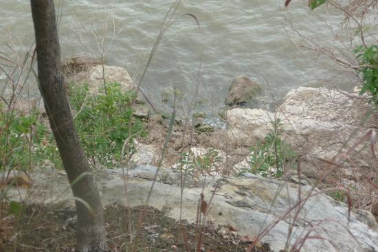 Denison, TX: Lake view