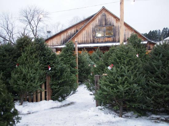 Woodstock Farmers Market: Winter wonderland at the mrket
