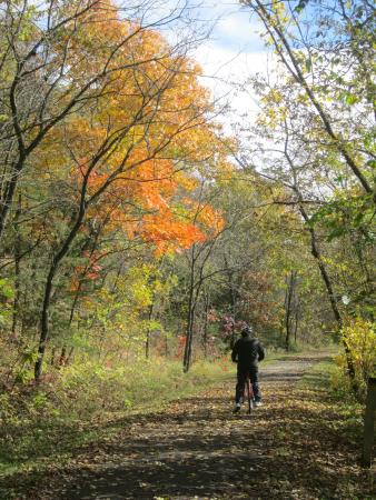 Anna V's Bed and Breakfast: Fall Biking on the Root River Trail