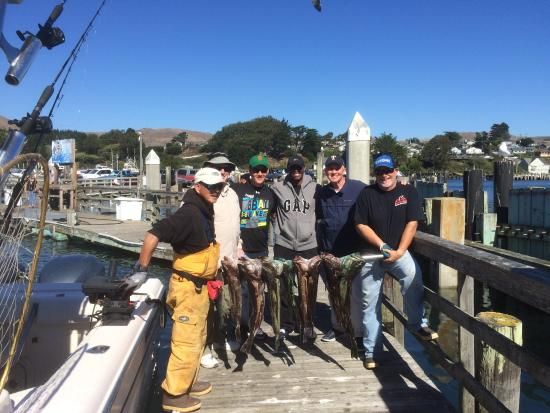 Great day ling cod fishing picture of north bay for Bodega bay fishing charters