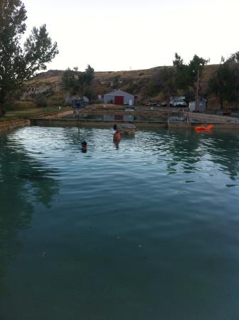 Fountain of Youth RV Park: Pool
