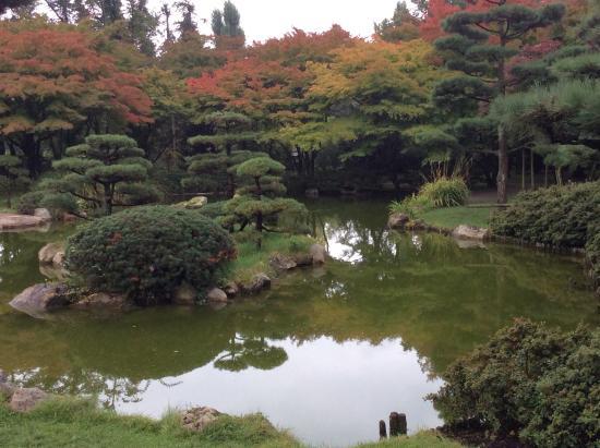 japanese garden d sseldorf alemania bild von japanischer garten d sseldorf tripadvisor. Black Bedroom Furniture Sets. Home Design Ideas
