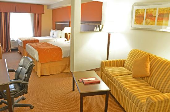 Comfort Suites Atlanta Airport: King Bed Suite