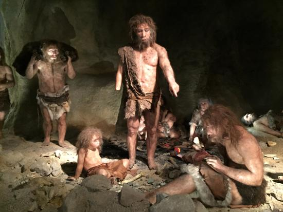 Сильвия неандерталь фото подругу