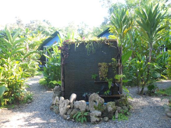 Hotel Casitas Mar Y Luz: fontaine à la reception