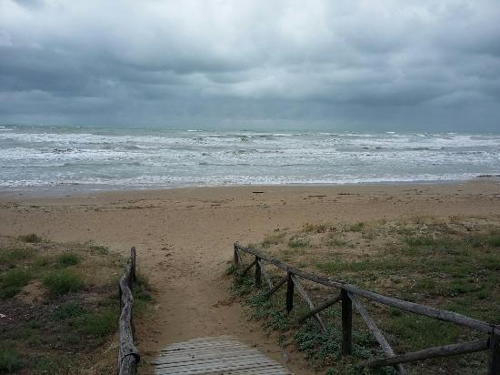 Frittura mista - Foto di Le Terrazze sul Mare, Foce Varano - TripAdvisor