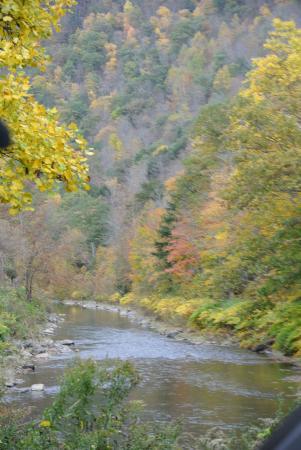 Tioga, Пенсильвания: A meandering Pine Creek