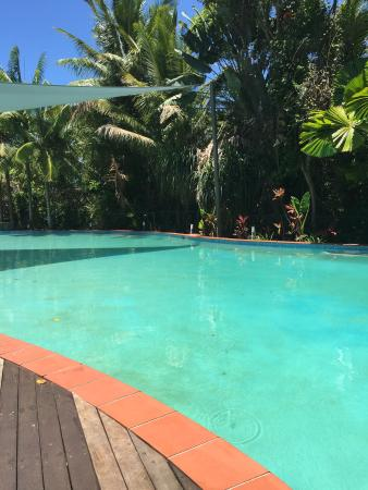 Oasis at Palm Cove: Pool is huge!!