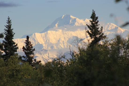 Talkeetna Chalet Bed & Breakfast: Our morning view...fabulous!