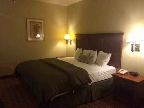 Mascoutah, IL: Nice comfortable bed