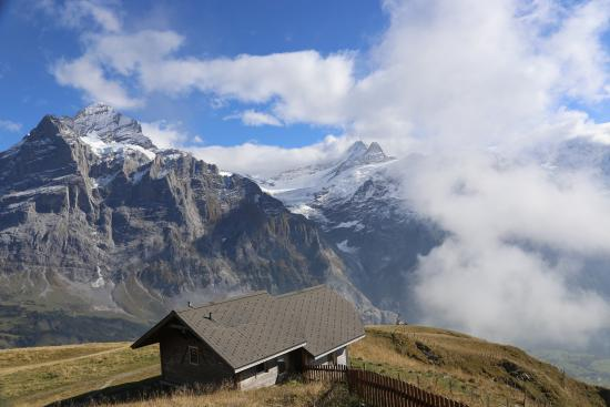 Grindelwald, Switzerland: Parts of Lake and Ponds