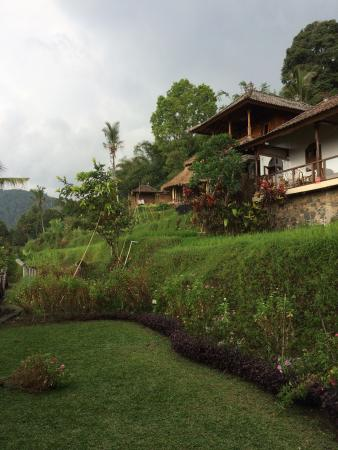 Puri Lumbung Cottages: photo2.jpg