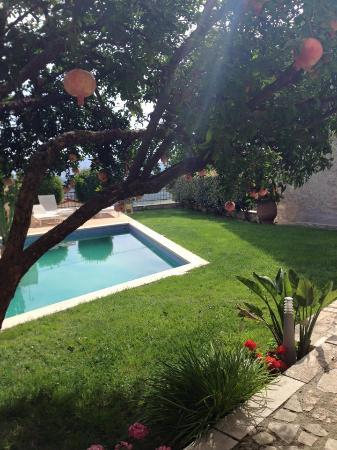 Villa Kerasia: Πισίνα