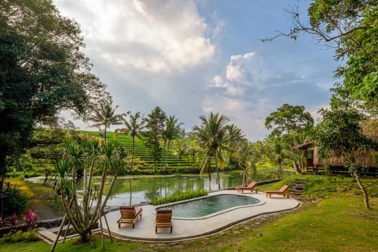 Alam Taman Villa