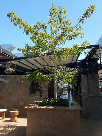 Eleven Rooftop Bar