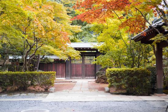 Niiza, Jepang: 境内