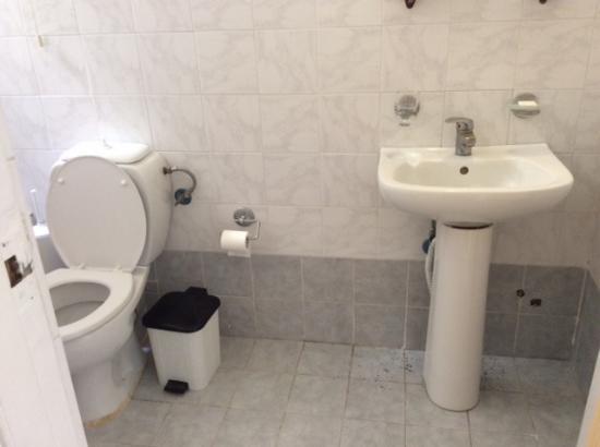 Cecil Hotel: Toilets