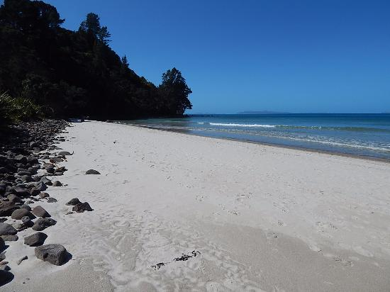 Fern Lodge: New Chums Beach...Sumptuous and well worth the short hike.