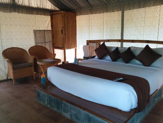 WOW Bison Woods Tent & Tent - Picture of WOW Bison Woods Yercaud - TripAdvisor