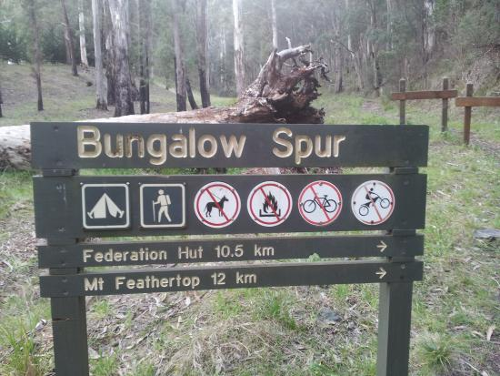 Harrietville, Australia: Entry to Bungalow Spur at Parking Lot