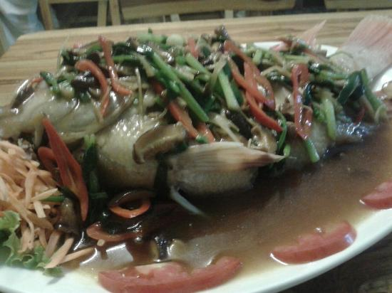 Steamed fish in soy sauce picture of cooking love for Cooking with fish sauce