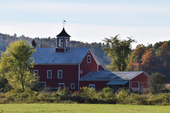Hyde Park, VT : Fall colors, beautiful countryside are close and easy to find..just drive anywhere