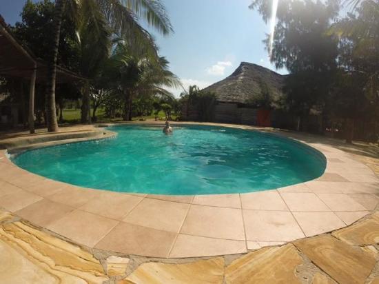 Tanzanite Beach Resort: Pool