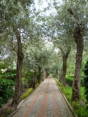 Panarea Giardini Naxos: Vista di un vialetto
