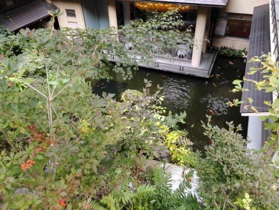 Hotel Futaba: 池