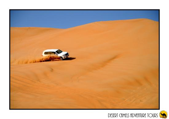 Desert Camels Adventure Tours