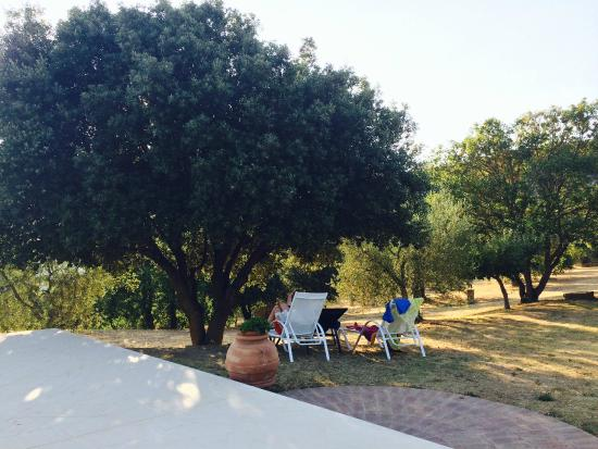 Country House Montali: Large garden and great swimming pool
