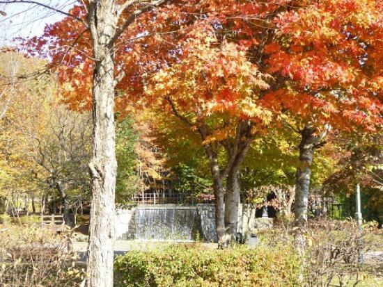 Meisui Fureai Park: 景色