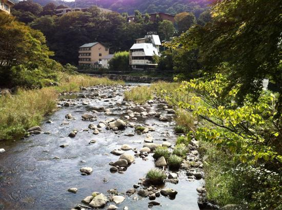 Hotel Senkei: Look out for the Japanese heron