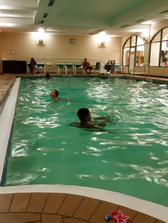 Indoor Pool Picture Of Four Points By Sheraton Suites Tampa Airport Westshore Tampa Tripadvisor