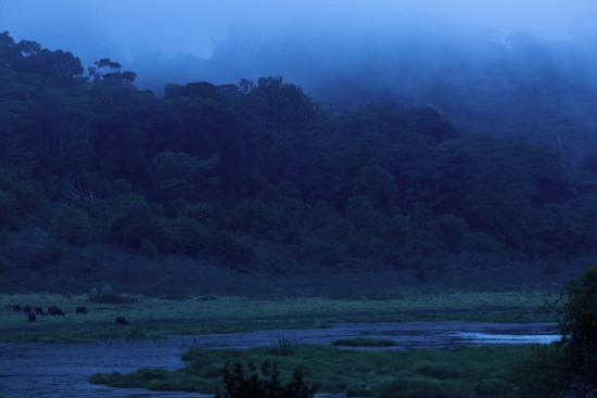 写真マルサビット 国立保護区枚