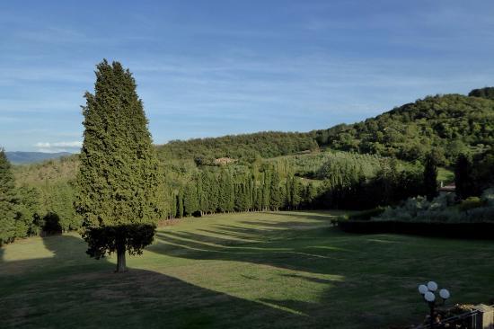 Villa Campestri Olive Oil Resort: Zimmeraussicht zum Garten