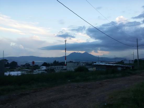 Peten, Guatemala: Peronia