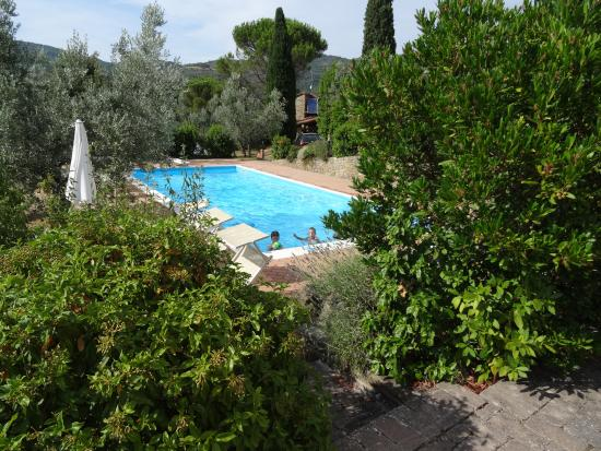 Agriturismo Stefano Stefano : From the terrace you can get to the pool