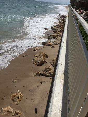 Eau Palm Beach Resort & Spa: There is almost no beach left due to erosion.