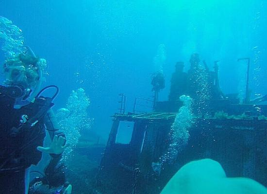 Dive Malta Dive Centre Photo