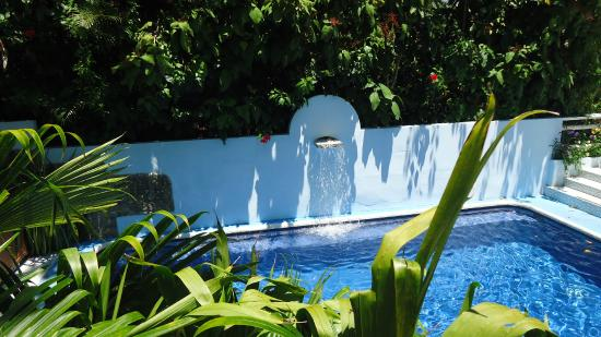 Hotel Mandarina : Piscina/Pool