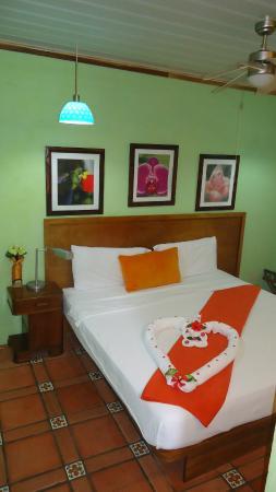 Hotel Mandarina: Habitación standard/Standard room